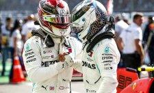 Mercedesům pronásledovaná kořist frnkla před nosem